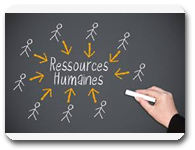 RESSOURCES_HUMAINES_all